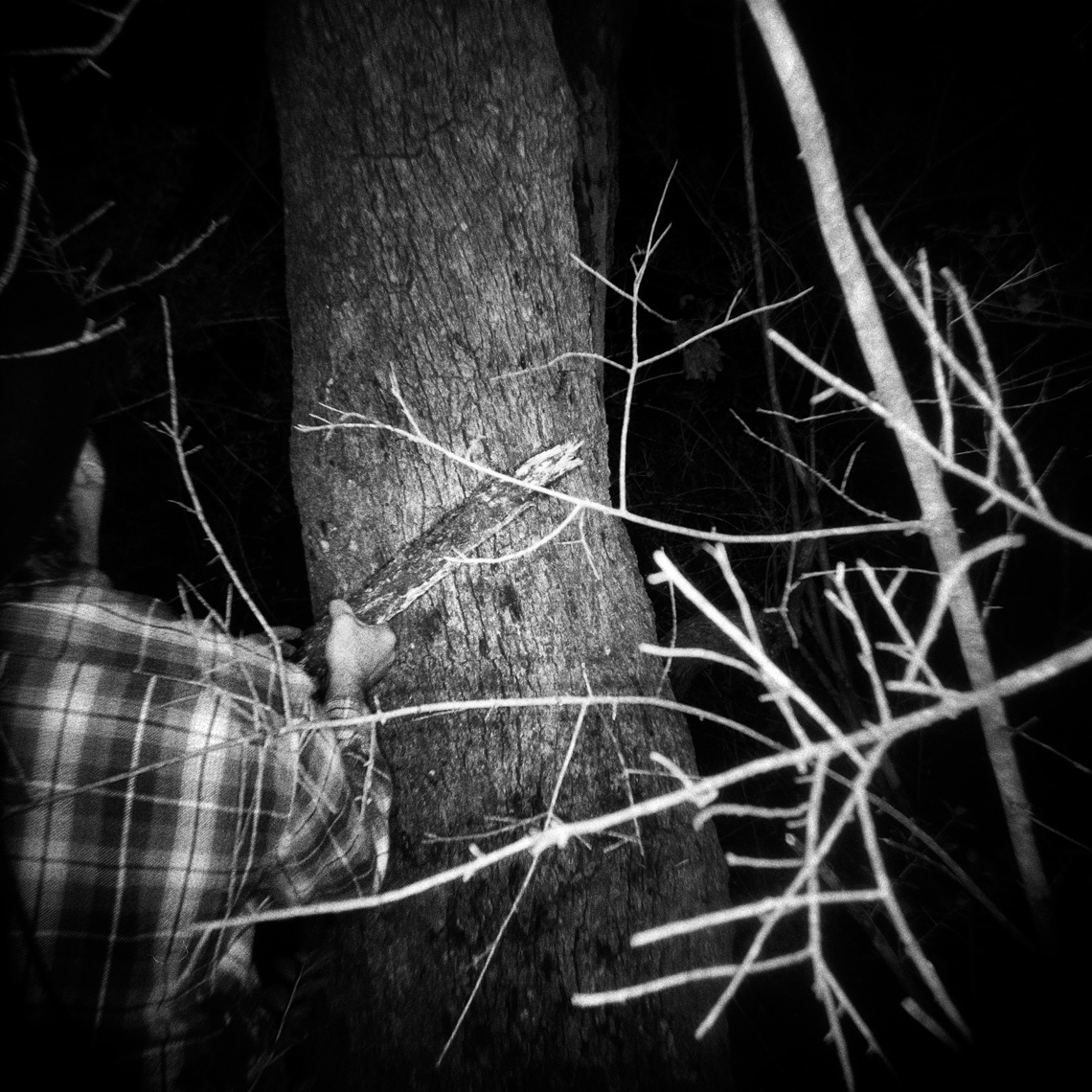 thibodeaux_brandon_texas_coon_hunting_night_sport_003.jpg