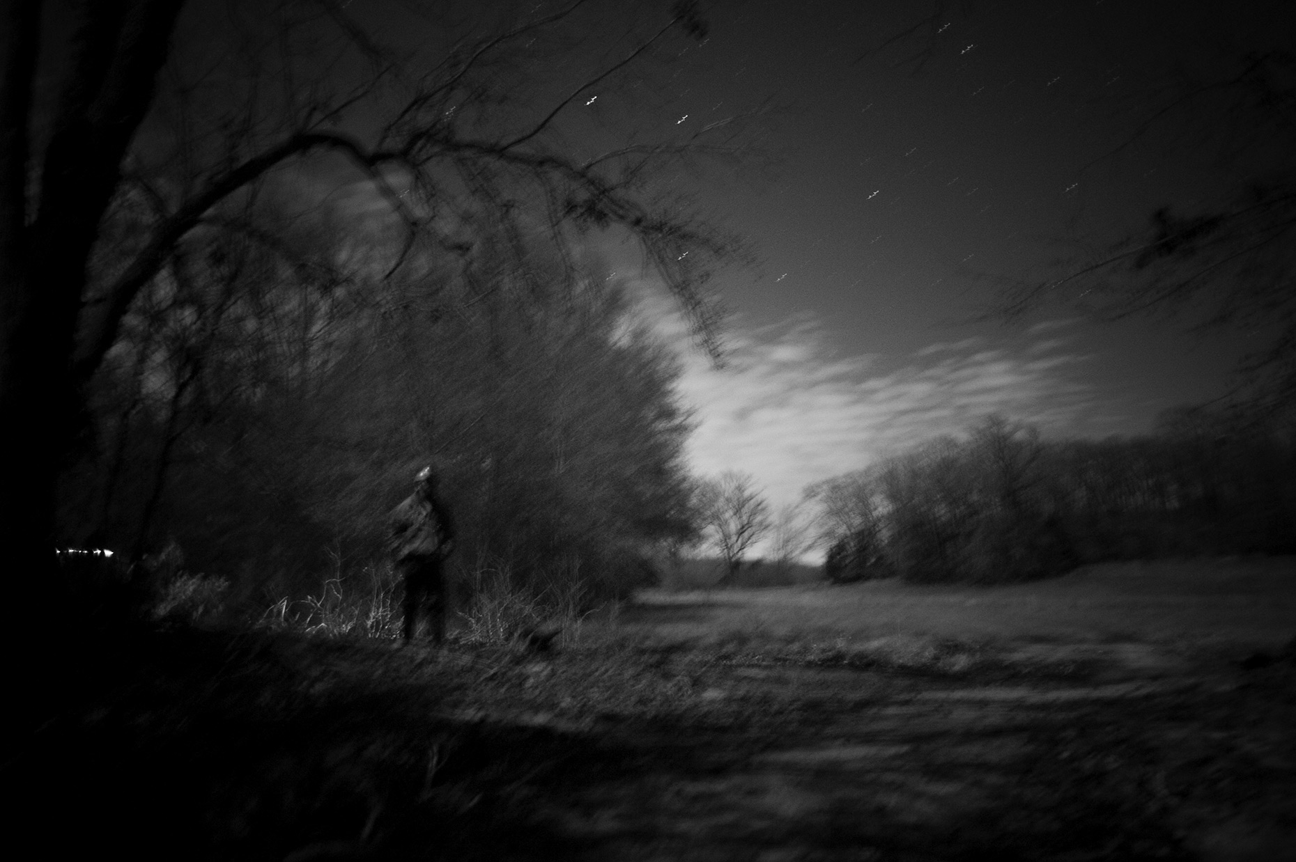 thibodeaux_coons_hunting_dogs_night_dark_woods_forest_south_rural_texas_sport_002.JPG